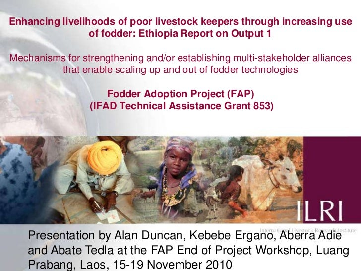 Enhancing livelihoods of poor livestock keepers through increasing use of fodder: Ethiopia Report on Output 1Mechanisms fo...