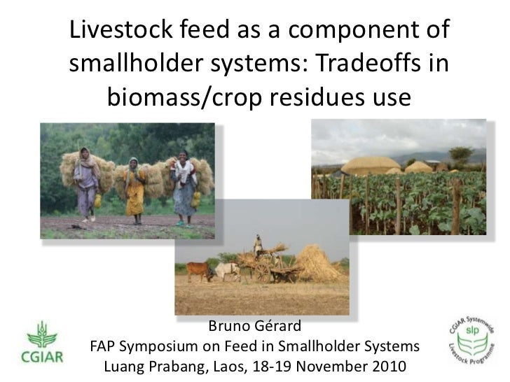 Livestock feed as a component of smallholder systems: Tradeoffs in biomass/crop residues use<br />Bruno Gérard<br />FAP Sy...