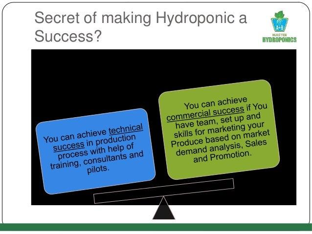 Secret of making Hydroponic a Success?