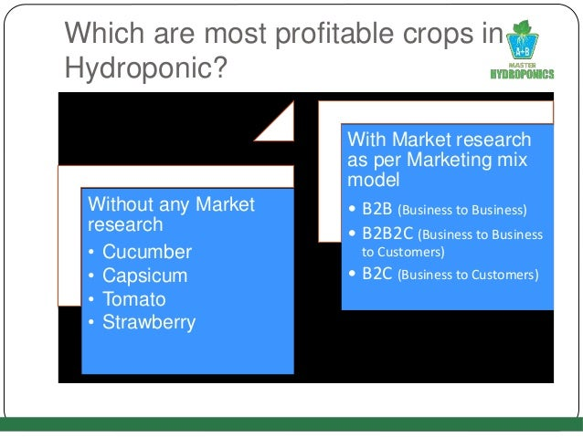Which are most profitable crops in Hydroponic? Without any Market research • Cucumber • Capsicum • Tomato • Strawberry Wit...