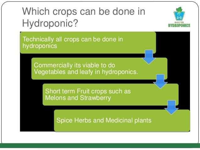 Which crops can be done in Hydroponic? Technically all crops can be done in hydroponics Commercially its viable to do Vege...