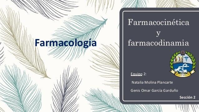 Farmacocinética y farmacodinamia Equipo 2: Natalia Molina Plancarte Genis Omar García Garduño Farmacología Sección 2