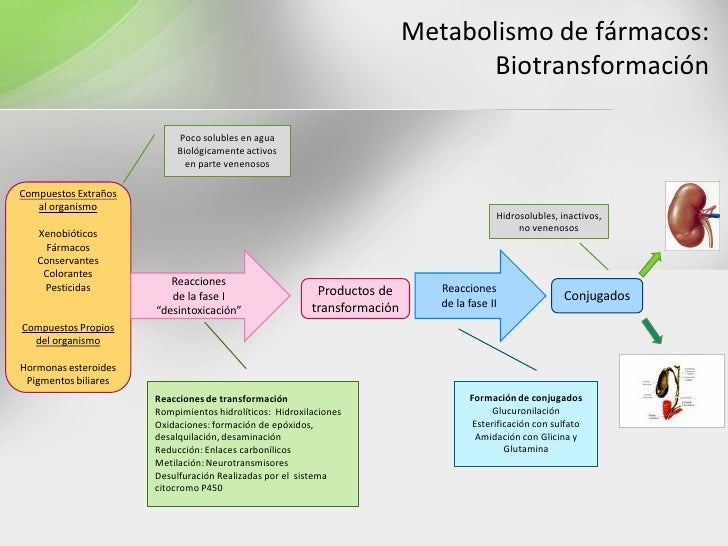 medicamentos esteroides antiinflamatorios