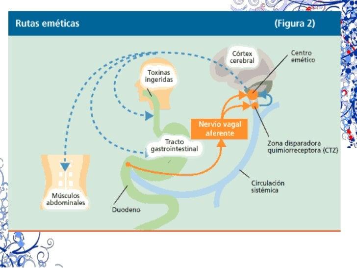 INDICACIONES<br />Reflujo gastroesofágico,<br />pirosis, agruras <br />Dolor epigástrico<br />(indigestión ácida)<br />Cic...