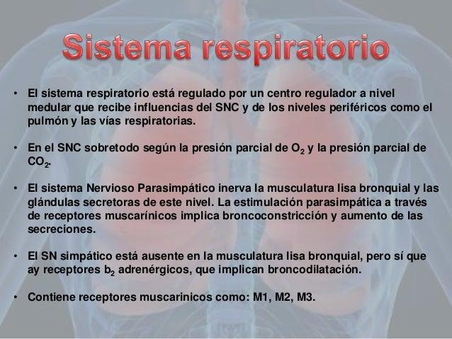 Farmacología del aparato respiratorio Slide 3