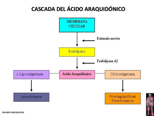 Farmacología del dolor y la inflamación