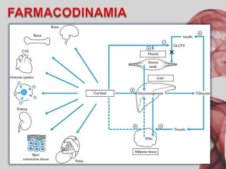 efectos de los esteroides anabolicos en el cuerpo humano