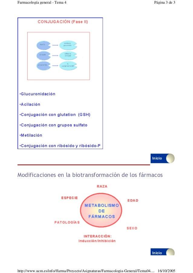 Modificaciones en la biotransformación de los fármacosPágina 3 de 3Farmacología general - Tema 416/10/2005http://www.ucm....