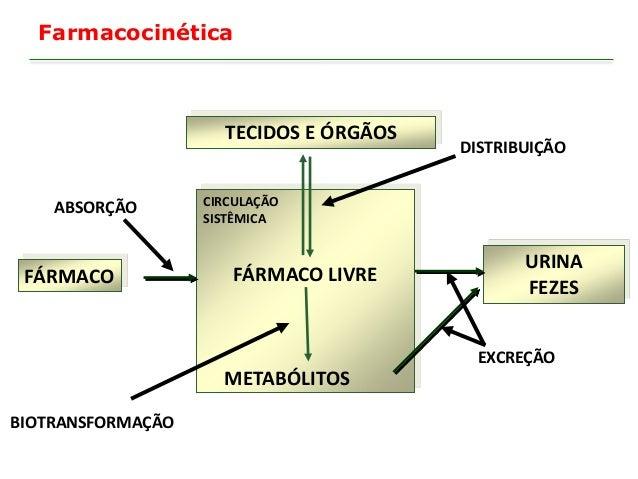 Área de concentração é metodologia de ensino e o tema é o lúdico co ferramentas pedagogica 8
