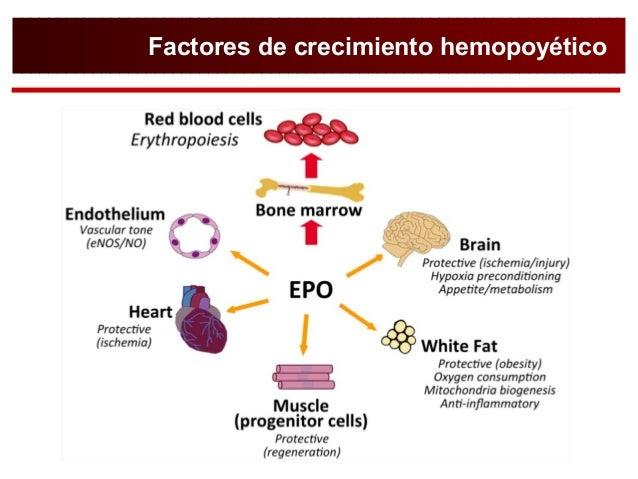 Farmacología Del Tratamiento De La Anemia Dr Pavía Jaca 2016