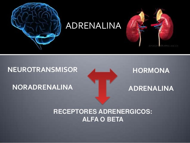 Principio activo: Lidocaína 2% Mepivacaína 3% Articaína 4% Prilocaína 3%  Vasoconstrictor: Epinefrina 1:50.000 1:80.000 1:...
