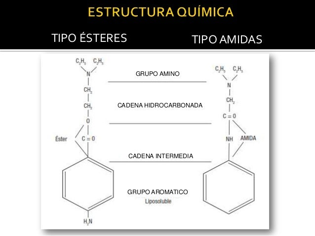 TIPO ÉSTERES  TIPO AMIDAS  CH2 GRUPO AMINO  C2H5  5H2C N  CH2  CH2 Es lipofílico, permite al fármaco penetrar O CADENA HID...