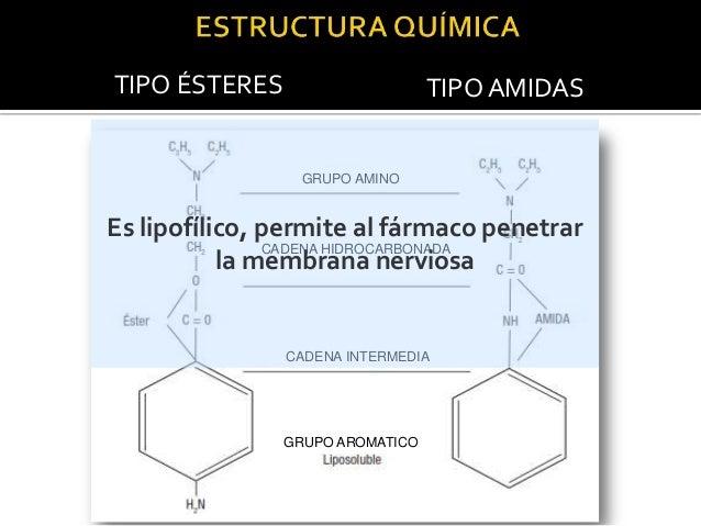 TIPO ÉSTERES  TIPO AMIDAS  CH2 GRUPO AMINO  C2H5  5H2C  N CH2 Mantiene la estructura en equilibrio O  CH2 CADENA HIDROCARB...