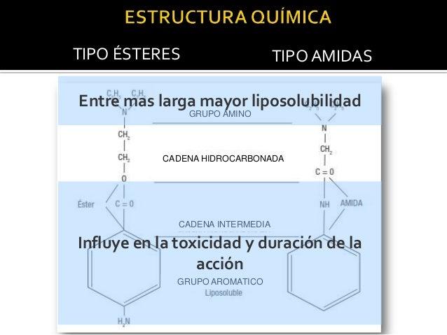 TIPO ÉSTERES  TIPO AMIDAS  CH2 GRUPO AMINO  N  CH2 O  C2H5  5H2C  CH2 CADENA HIDROCARBONADA  Es Hidrofílico CADENA INTERME...