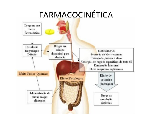 FARMACODINÂMICA • Definição: É o estudo dos mecanismos relacionados à ação do medicamento e seu efeito no organismo. A res...