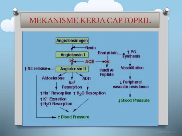 Obat captopril pdf