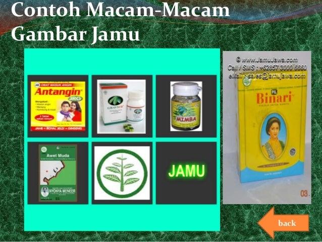 Contoh Karya Ilmiah Obat Herbal Contoh Fm