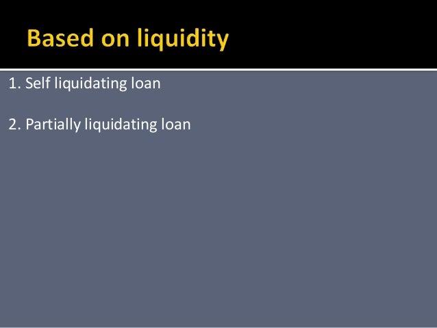 Self liquidating loan program