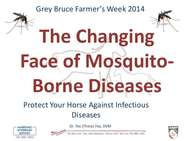 Grey Bruce Farmer's Week 2014  The Changing Face of MosquitoBorne Diseases Protect Your Horse Against Infectious Diseases ...
