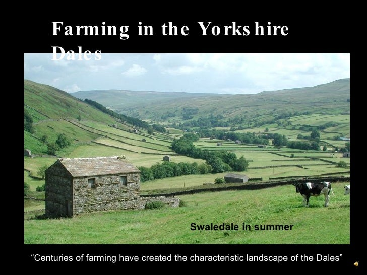 """Farming in the Yorkshire Dales """" Centuries of farming have created the characteristic landscape of the Dales"""" Swaledale in..."""