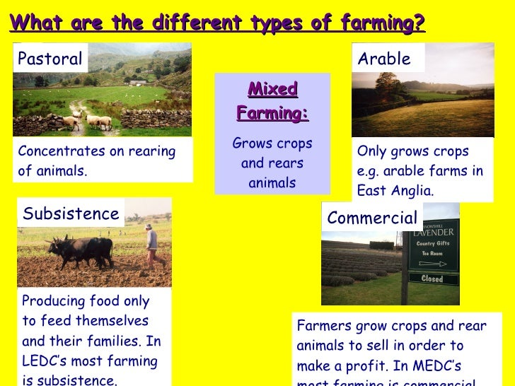 Farming System, Types And Decisions And Distribution Ap