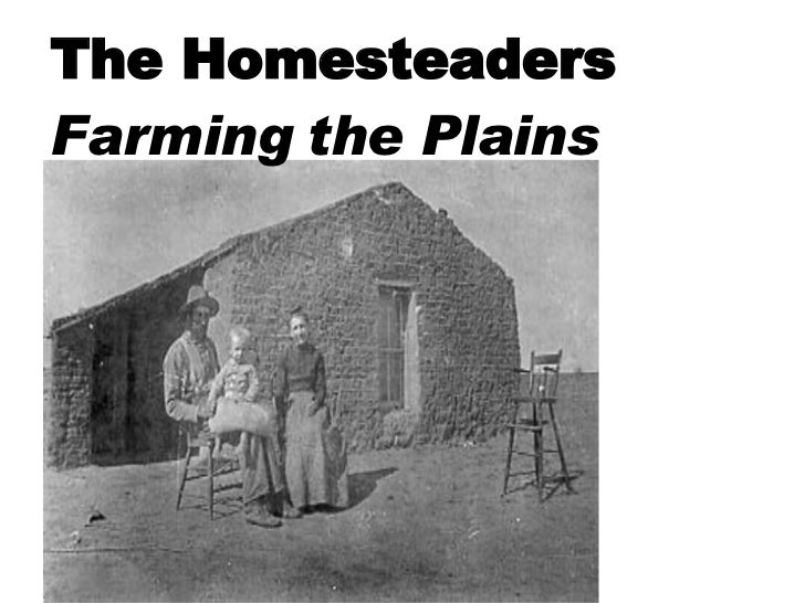 The Homesteaders  Farming the Plains
