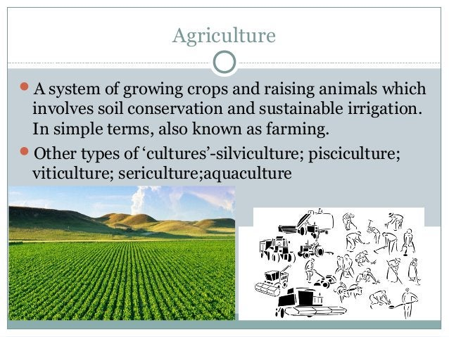 Agriculture A system of growing crops and raising animals which involves soil conservation and sustainable irrigation. In...