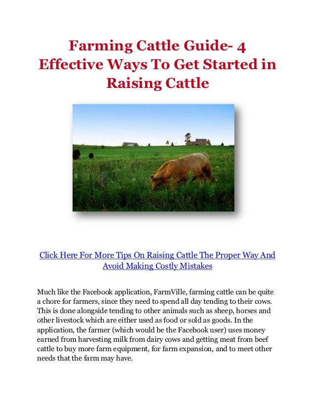 Farming Cattle Guide- 4Effective Ways To Get Started in          Raising CattleClick Here For More Tips On Raising Cattle ...