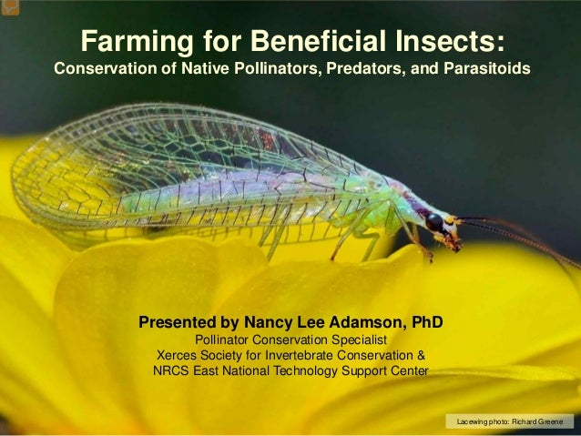 Farming for Beneficial Insects: Conservation of Native Pollinators, Predators, and Parasitoids  Presented by Nancy Lee Ada...