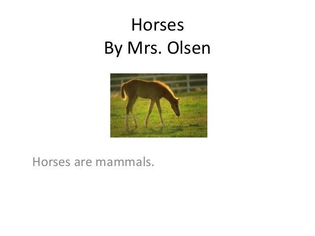 Horses By Mrs. Olsen Horses are mammals.