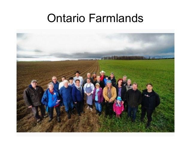 Ontario Farmlands