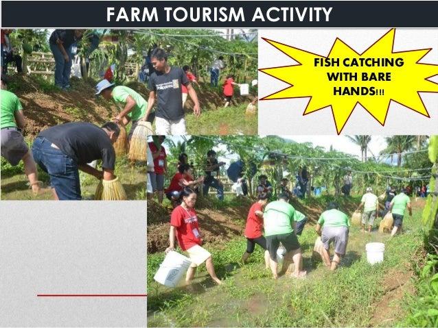 https://image.slidesharecdn.com/farmtoursiminorganicagricultureronaldcostales-160720081713/95/farm-tourism-in-organic-agriculture-34-638.jpg