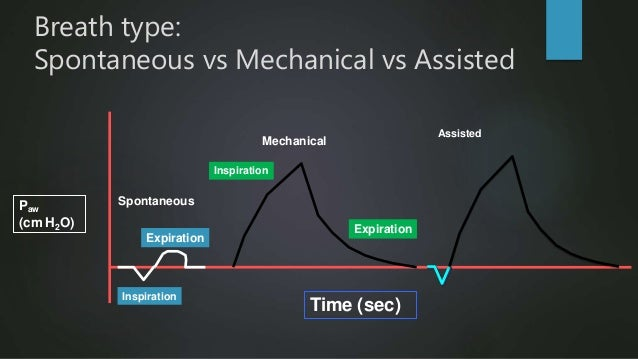 Mechanical Time (sec) SpontaneousPaw (cm H2O) Inspiration Expiration Expiration Inspiration Breath type: Spontaneous vs Me...