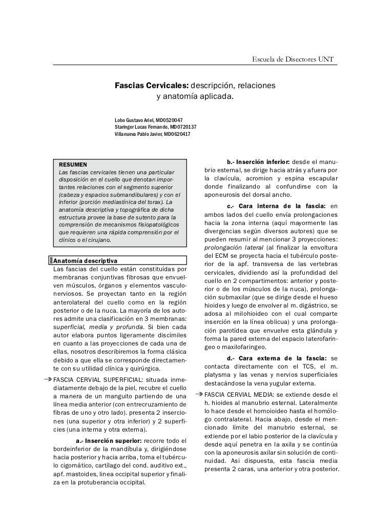Escuela de Disectores UNT                       Fascias Cervicales: descripción, relaciones                               ...