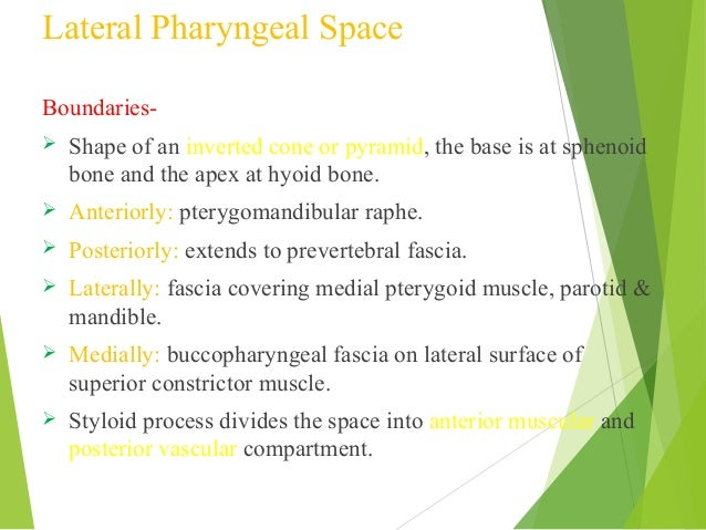 Fascialspaceinfections 140219122023-phpapp01
