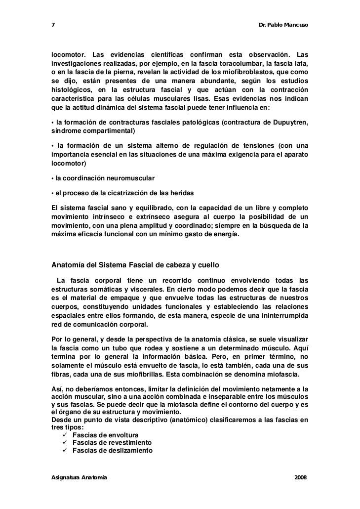 Fascias 2