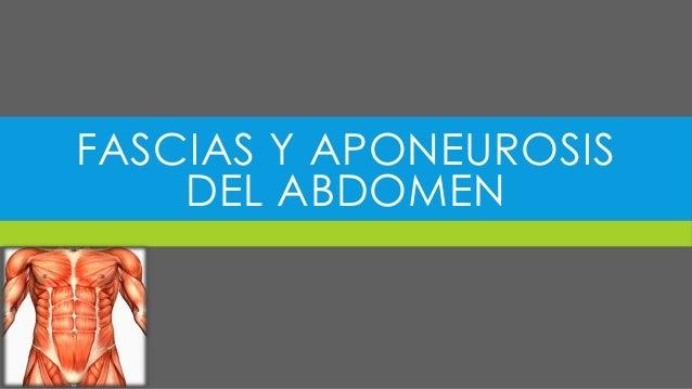 FASCIAS Y APONEUROSIS DEL ABDOMEN