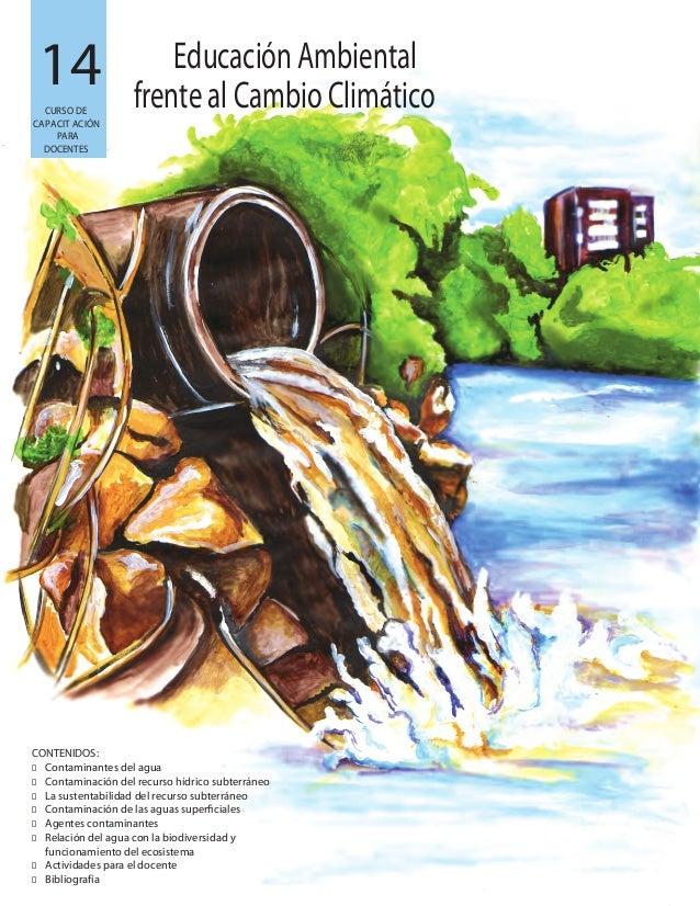 14 CONTENIDOS: � Contaminantes del agua � Contaminación del recurso hídrico subterráneo � La sustentabilidad del recurso s...