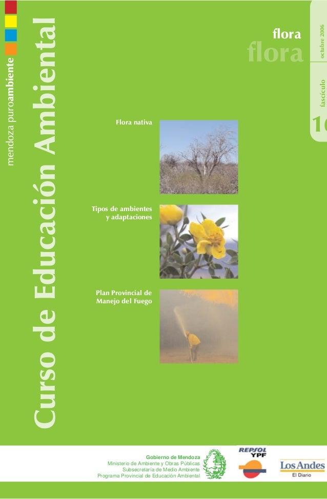 CursodeEducaciónAmbiental flora flora 16 octubre2006 Gobierno de Mendoza Ministerio de Ambiente y Obras Públicas Subsecret...