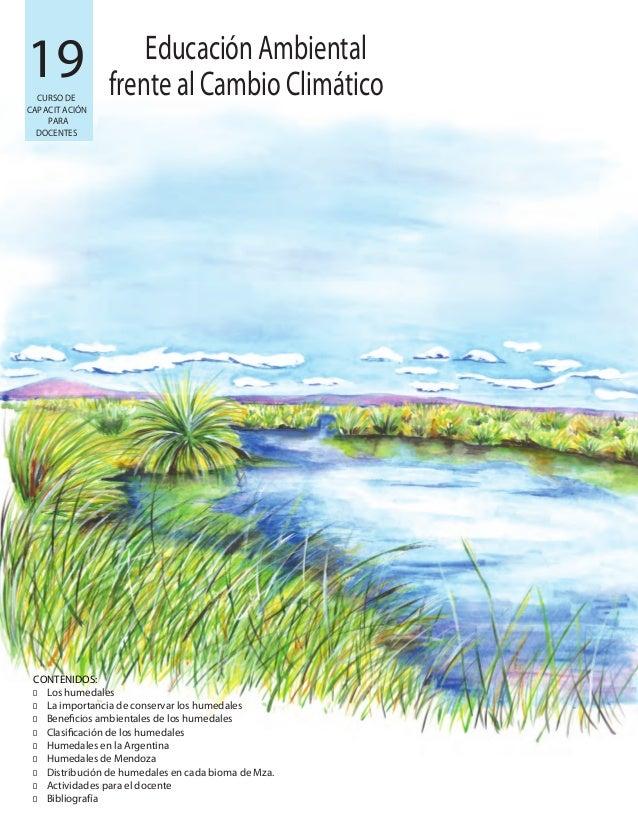 19 CONTENIDOS: � � � � � � � � � Los humedales La importancia de conservar los humedales Beneficios ambientales de los hum...