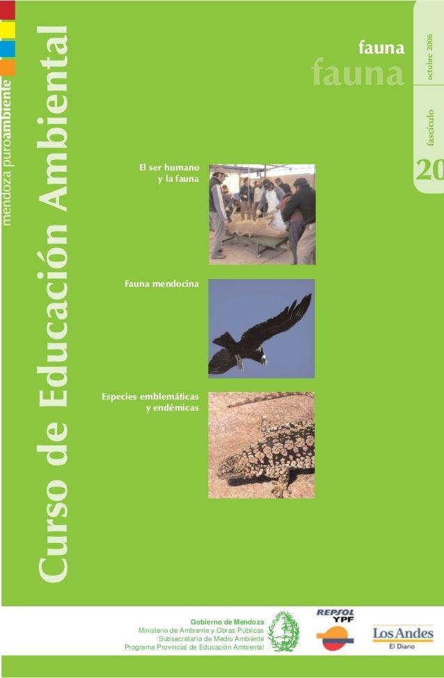 CursodeEducaciónAmbiental fauna fauna 20 octubre2006 Gobierno de Mendoza Ministerio de Ambiente y Obras Públicas Subsecret...