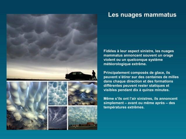 Les nuages mammatusFidèles à leur aspect sinistre, les nuagesmammatus annoncent souvent un orageviolent ou un quelconque s...