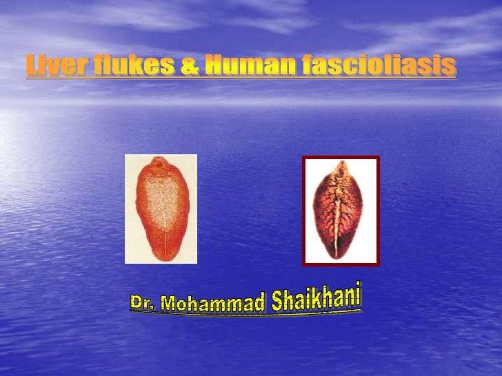 EtiologyGlobal zoonotic disease