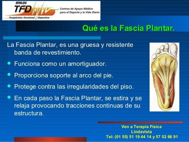 Qué es la Fascia Plantar.La Fascia Plantar, es una gruesa y resistente  banda de revestimiento.   Funciona como un amorti...
