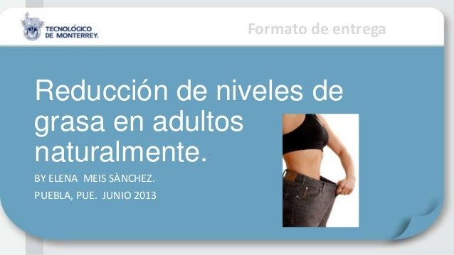 Formato de entregaReducción de niveles degrasa en adultosnaturalmente.BY ELENA MEIS SÀNCHEZ.PUEBLA, PUE. JUNIO 2013