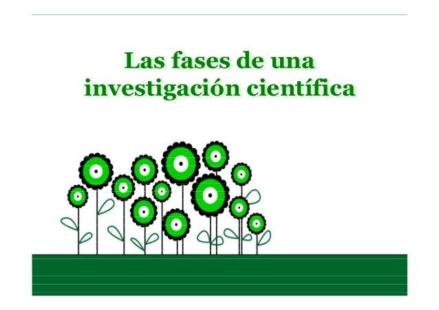 Las fases de una investigación científica Las fases de una investigación científica