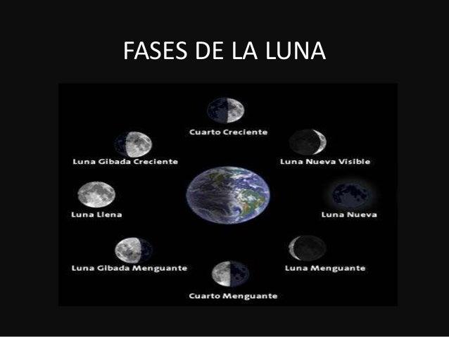 Fases Dela Luna