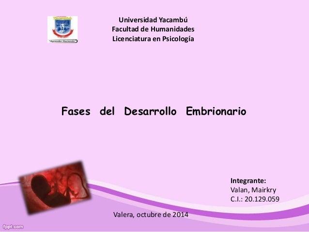 Universidad Yacambú  Facultad de Humanidades  Licenciatura en Psicología  Fases del Desarrollo Embrionario  Integrante:  V...