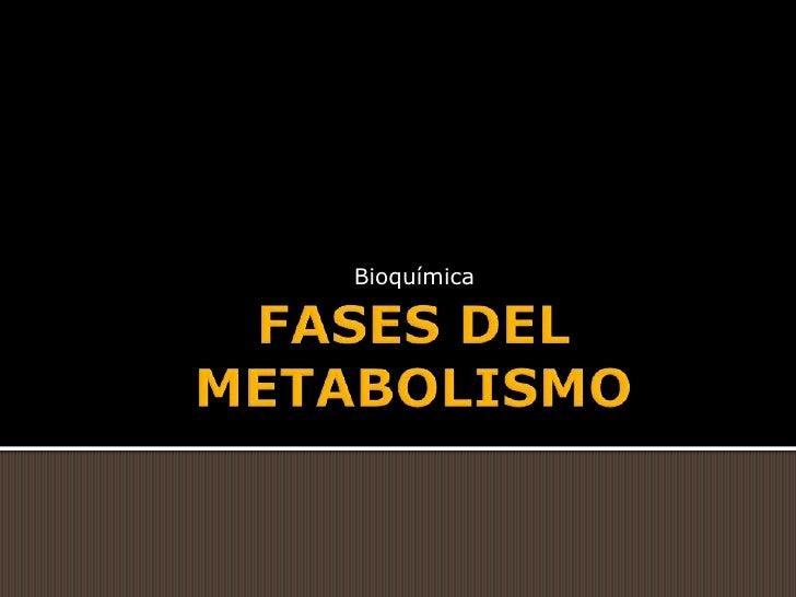 FASES DEL METABOLISMO<br />Bioquímica<br />