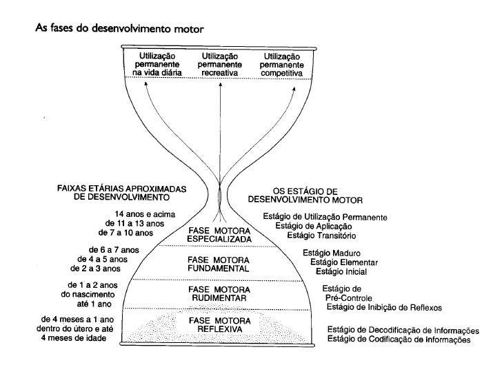 Educação Física Escolar – 1a. e 2a. séries                                          MOVIMENTO HUMANO                      ...